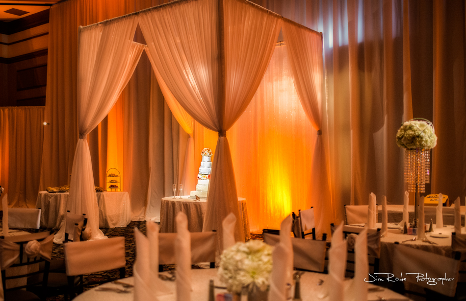 Dallas Drape & wedding lighting